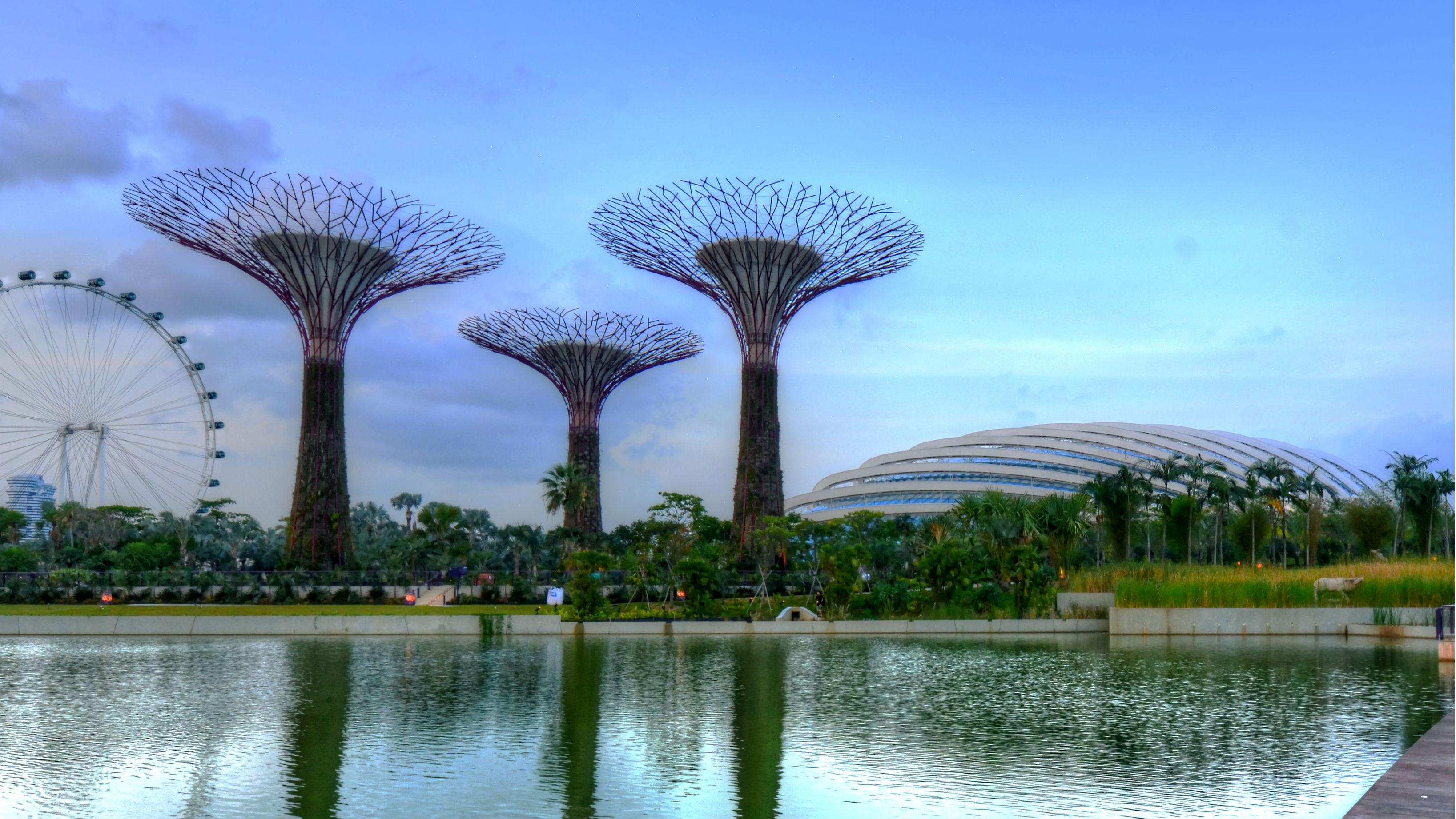 Gardens by the Bay and Singapore Flyer